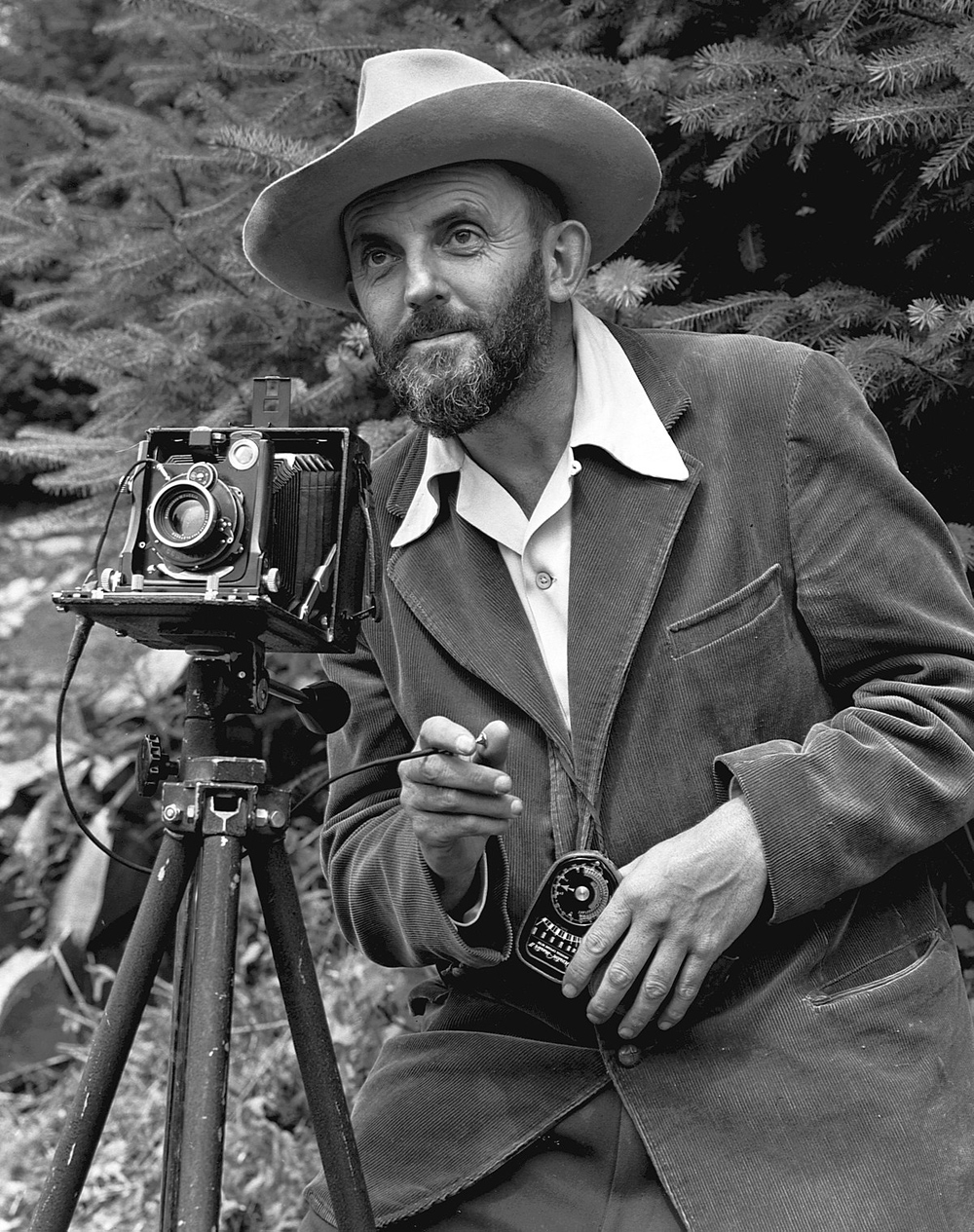 Portrait Of Ansel Adams By J.Malcolm Greany