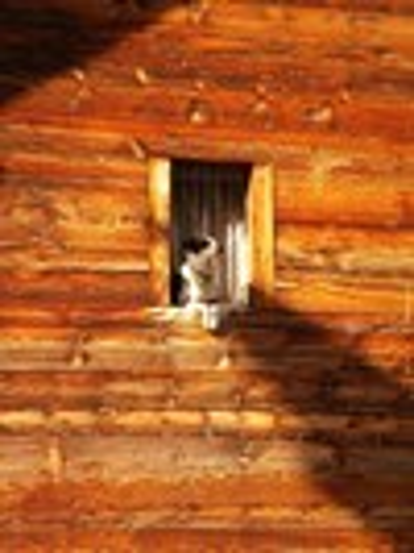My Window By Richard Tucker ARPS Switzerland