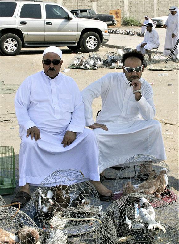 Pigeon Sellers, Qatif Market, KSA