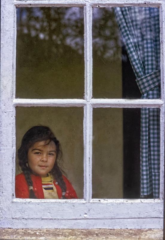 Miriam At The Window By Ashok Viswanathan India