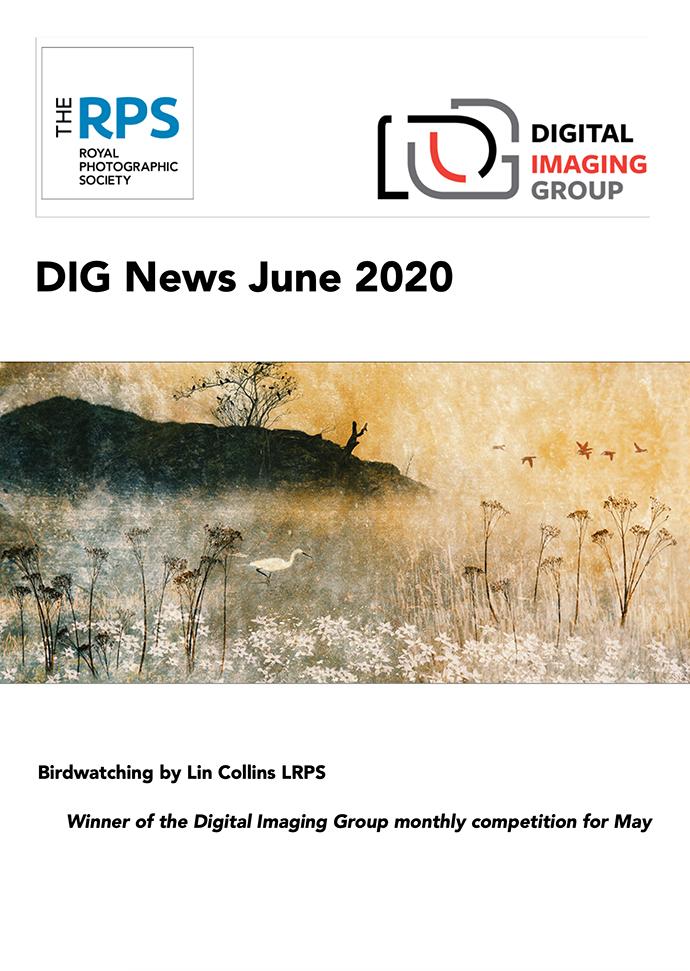 Front Cover DIG News Jun 2020