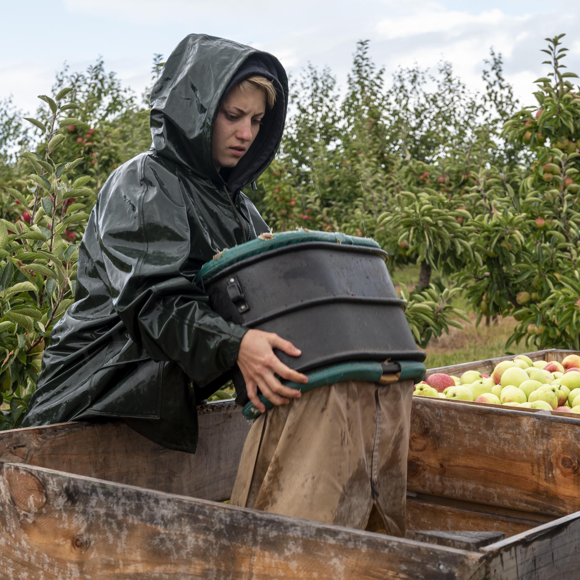Jo Court LRPS Kent Fruit Farm Wet Work