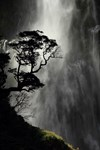 Waterfall Silhouette By Wynston Cooper ARPS (New Zealand)