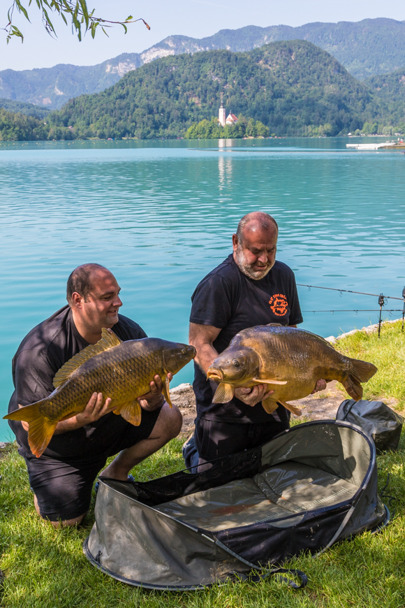 Lake Bled Fish, Slovenia