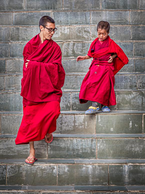 Big Steps, Little Monk, Ladakh
