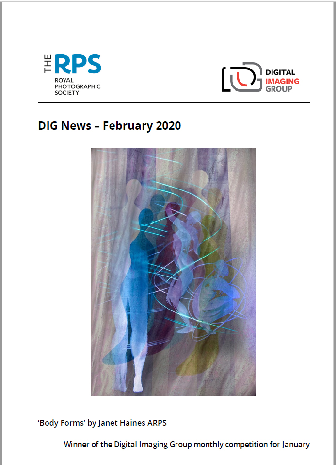 Feb DIG News 2020 Cover